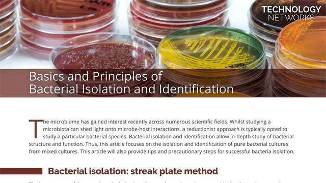 Basics and Principles of Bacterial Isolation and Identification