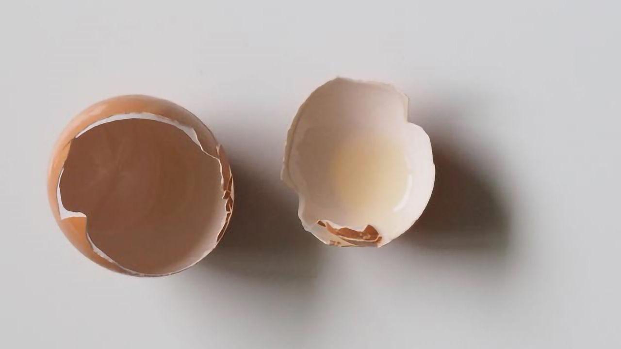 Using Eggshells to Enhance the Growth of New Bones
