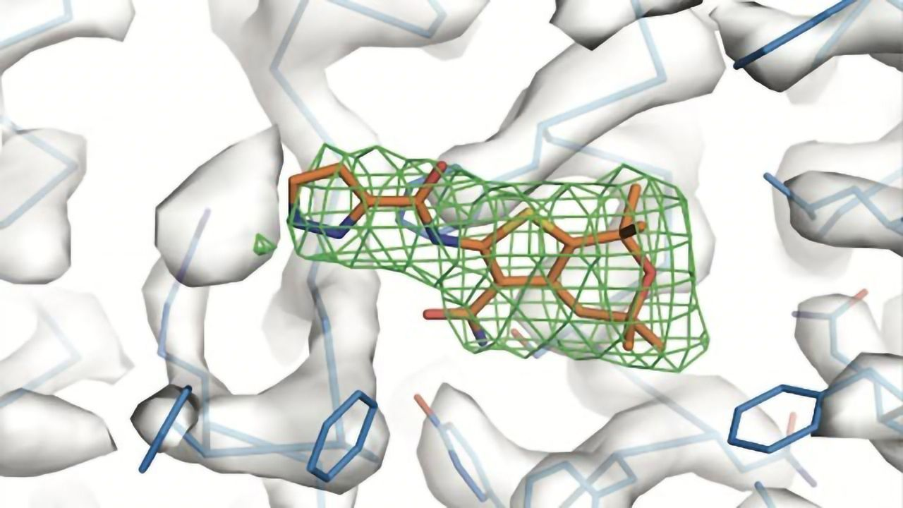 Hinge-like Protein Could Open Door to New Cystic Fibrosis Treatment