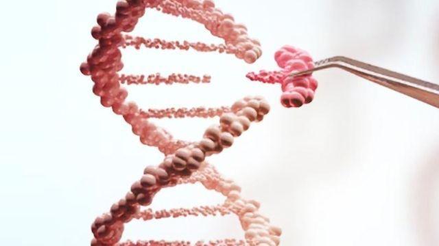 How CRISPR Lets Us Edit Our DNA