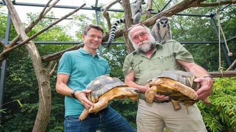 Disease Biomarker Identification: The Zoo Animals Doing Their Bit for Science