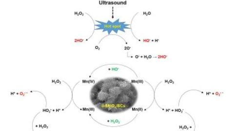 Removing Water Pollutants With Ultrasound and Eco-friendly Catalyst