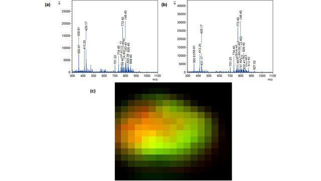 First Mass Spectrometry images Recorded Using the Matrix-assisted Ionisation in Vacuum Technique