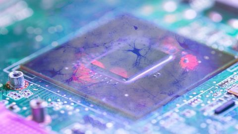 How Far Can Organs-on-Chips Go On Their Own?