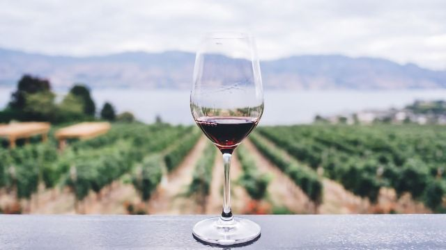 Red Wine Molecule Resveratrol Could Slash Stress In Mice At Least