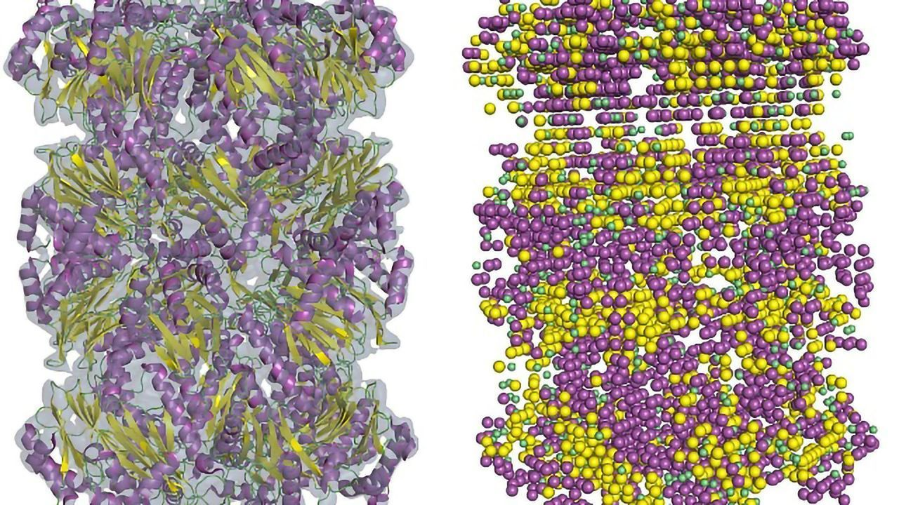 Low-res Cryo-EM Maps Brought up to Scratch With New Software