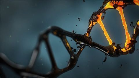 Viruses That Hid in Ancestor's DNA Are Waking Up