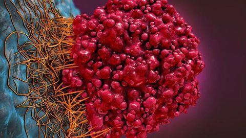 Unprecedented Insight into Potential Anticancer Drug Target