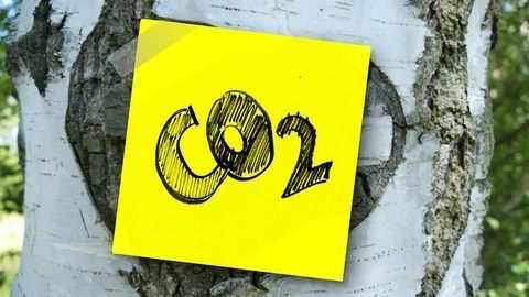 Making Useful Gas From Waste CO2