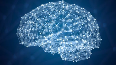 Brain Fibers Keep Memory Sharp in Old Age