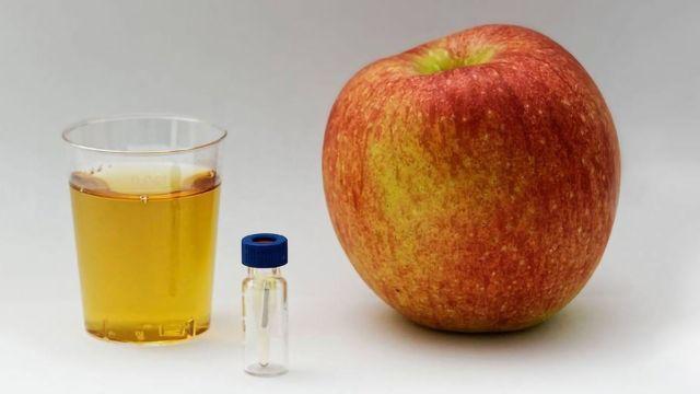 Food Profilers Improve Food Analysis Tools