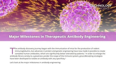 Major Milestones in Therapeutic Antibody Engineering