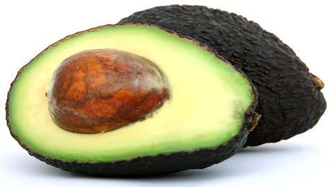 Guacamole Lovers, Rejoice! Scientists Sequence the Avocado Genome