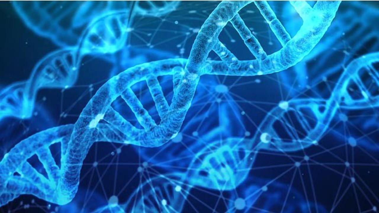 Gene Mutation Combo Linked to Endometrial Cancer