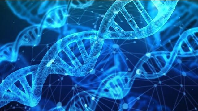 Gene Mutation Combo Linked to Endometrial Cancer