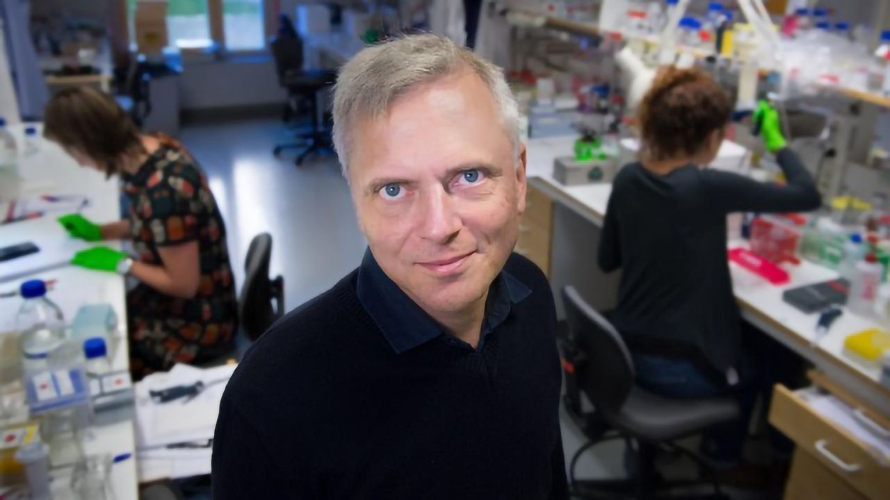 New Pain-sensitive Organ Found in Skin