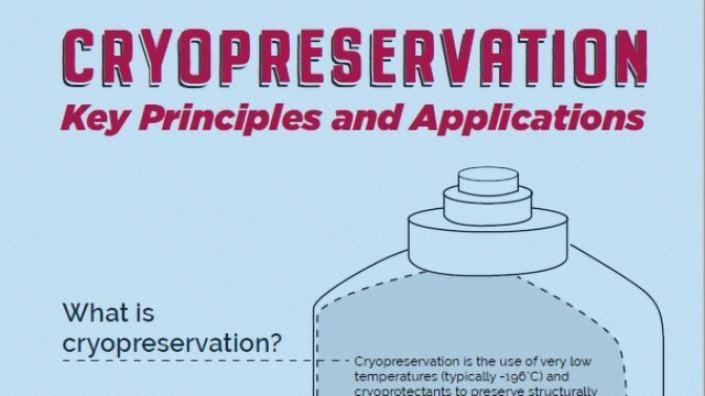 Cryopreservation: Key Principles and Applications