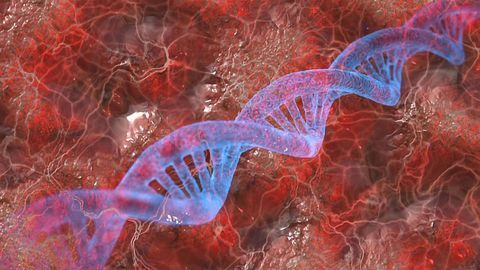 Gene Therapy for Niemann-Pick Type a Diseases Moves Forward