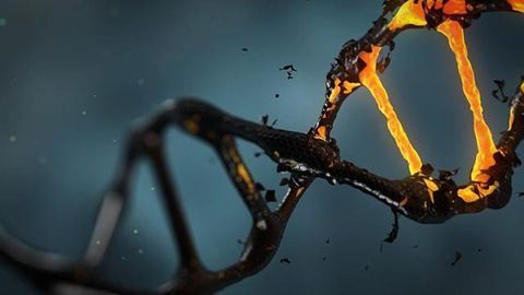 Slow Electrons Destroy Cancer Cell DNA