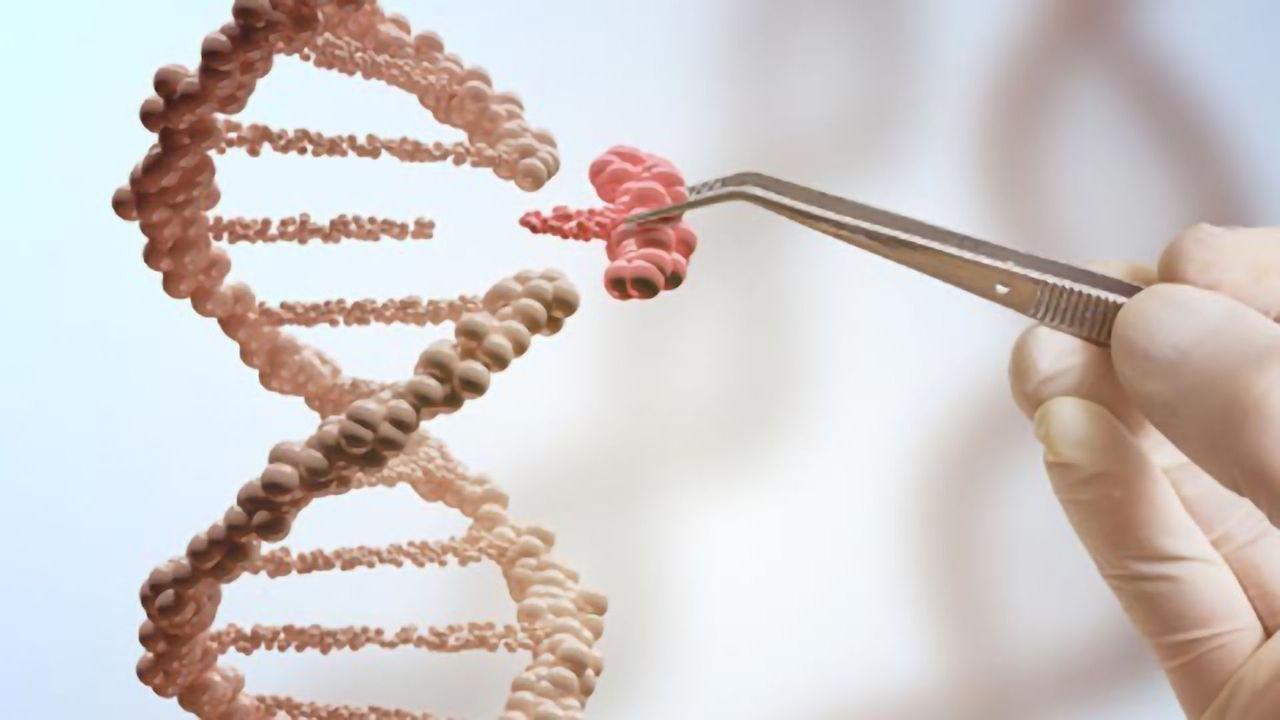 Novel Gene-editing Tool SATI Successfully Targets Non-coding DNA