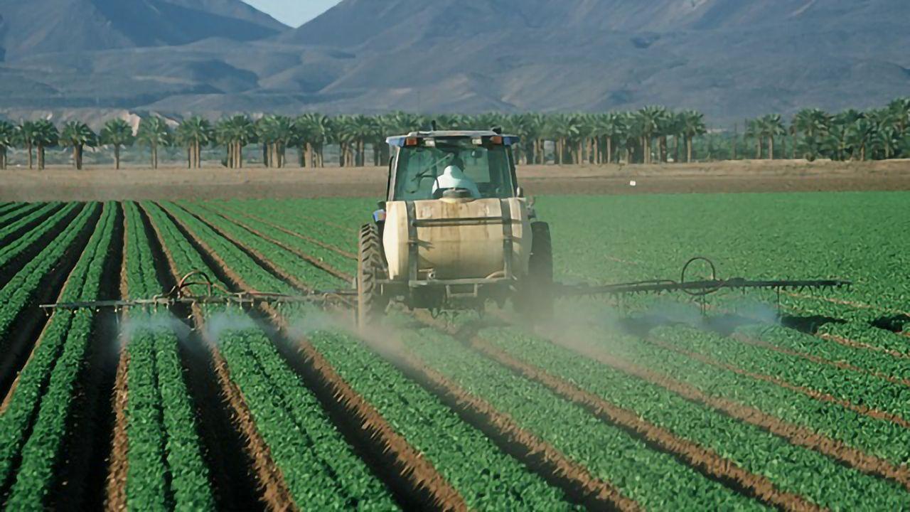 Teen Brain Changes Linked to Prenatal Pesticide Exposure