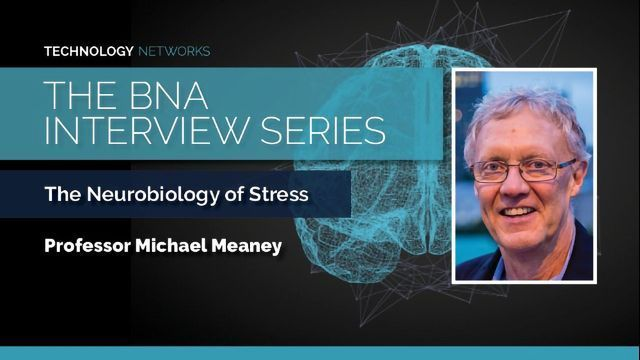 The Neurobiology of Stress With Professor Michael Meaney