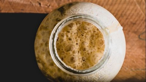 Revealing Yeast's Probiotic Properties