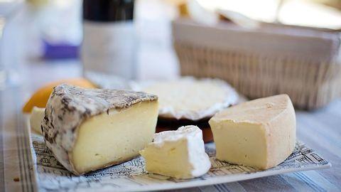 Cheese as a Model Microbial Ecosystem - Rachel Dutton (Harvard)