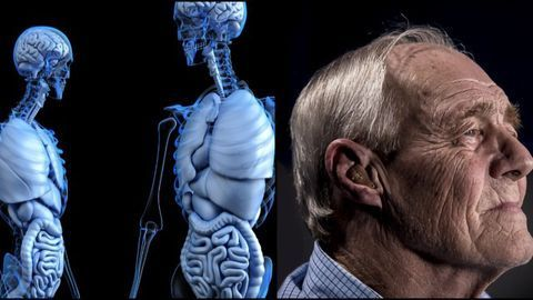 Parkinson's Disease May Start in the Intestines, New Rat Study Concludes