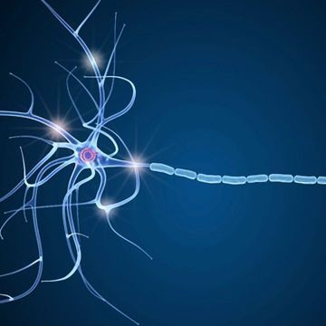 Compound Created to Help Reconstruct Myelin in Multiple Sclerosis