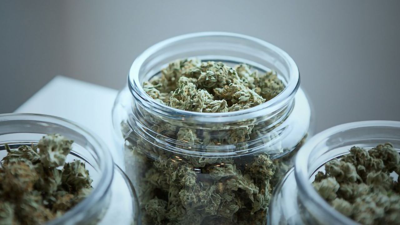 Using Cannabis to Treat PTSD Isn't Yet Supported by High-quality Evidence