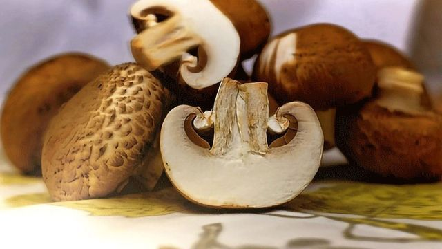 Eating Mushrooms May Help Reduce Prostate Cancer Risk
