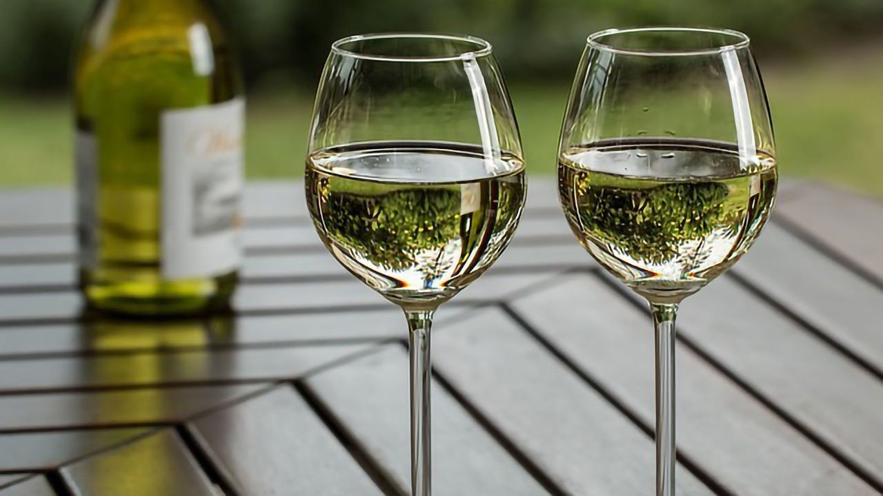 A Toast – To the Genetic Diversity of Grapes