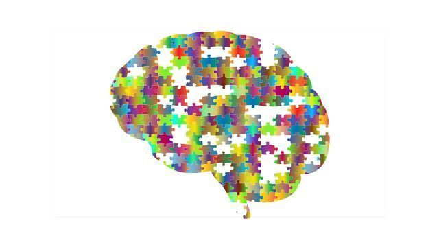 A New Piece of the Alzheimer's Puzzle
