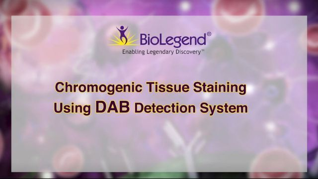 Chromogenic Tissue Staining Using DAB Detection Systems