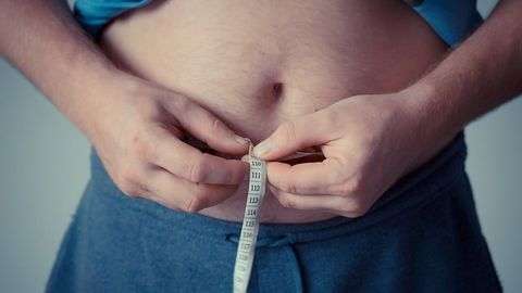 Weight Gain Could Be Linked To Gut Bacteria