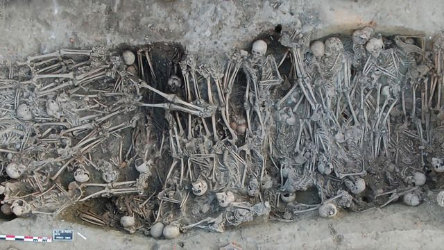 Ancient Genomes Tell the Genetic History of the Second Plague Pandemic