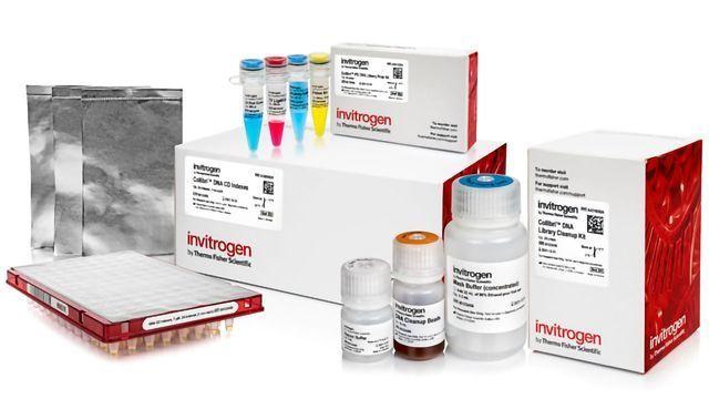 Invitrogen™ Collibri™ DNA Library Prep Kits for Illumina™ Systems