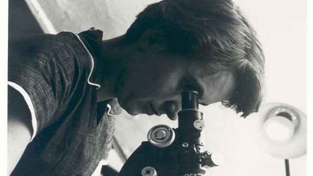 Rosalind Franklin Award Recognizes Young Women at the Forefront of Genetics Research