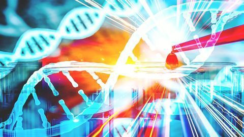CRISPR-BEST, a New Genome Editing Tool for Actinomycetes