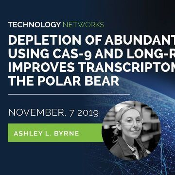 Depletion of Abundant Transcripts Using Cas-9 and Long-read Sequencing Improves Transcriptome Annotation of the Polar Bear