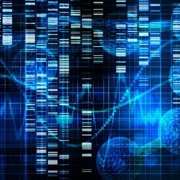 A Brain Protein Behind Chronic Pain