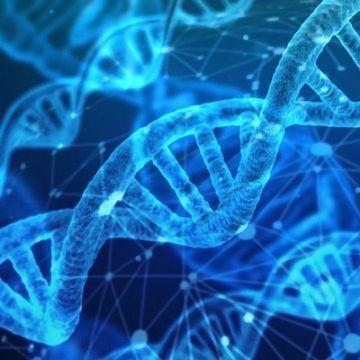 New Genetic-based Epilepsy Risk Scores