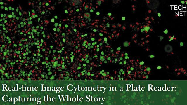 Real-time Image Cytometry in a Plate Reader: Capturing the Whole Story
