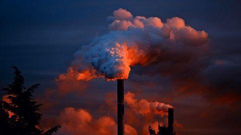 Elevated Nitrogen Emissions Linked to Kidney Damage