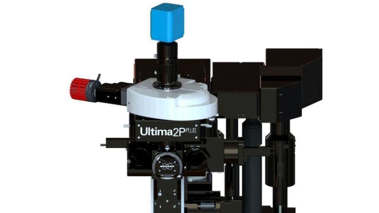 Ultima 2Pplus
