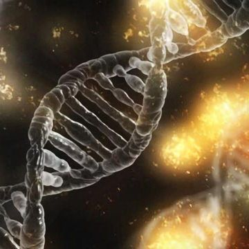 Triple-negative Breast Cancer Influenced by Dual Action of Genes and RNA