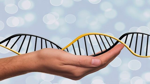 "New CRISPR Editing System a ""Genetic Word Processor"""