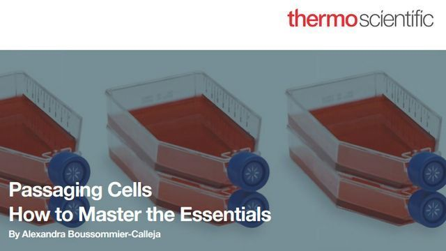 Passaging Cells: How to Master the Essentials