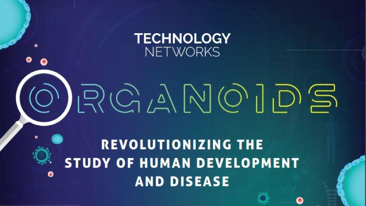 Organoids – Revolutionizing the Study of Human Development and Disease